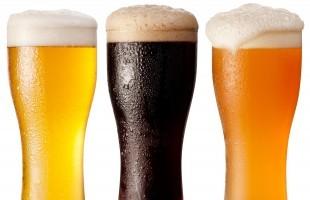 Beer 310x200